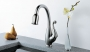 Floriano - Single Handle Kitchen Pull Down Faucet