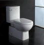 Dionysus - Contemporary One-Piece Toilet